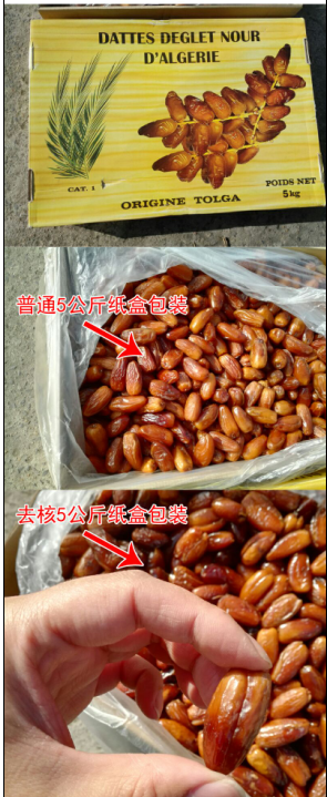 阿尔及利亚椰枣